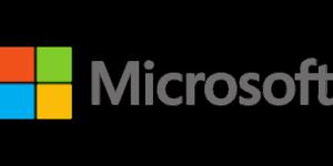 Microsoft CRM Consultant